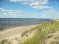 Sandgrönnorna 2005-07-29034