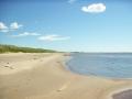 Sandgrönnorna 2005-07-29035